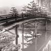 Arched Bridge to Japanese Garden