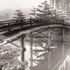 Arched Bridge to Japanese Garden